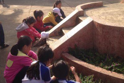 Lao Động Bảo Vệ Môi Trường